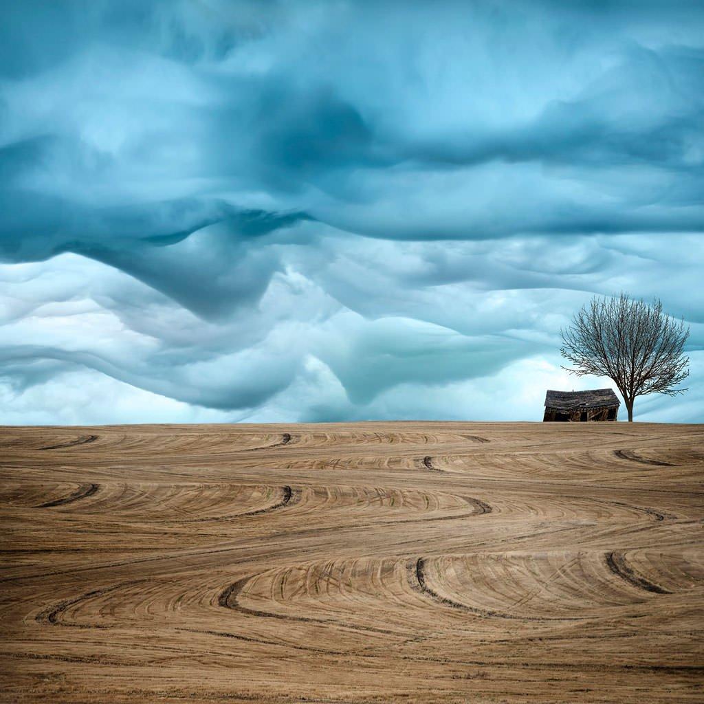 Art-of-Farmland-No4._mini