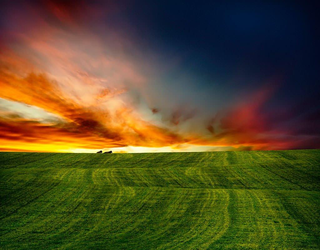 Art-of-Farmland-No6-FINAL2_mini