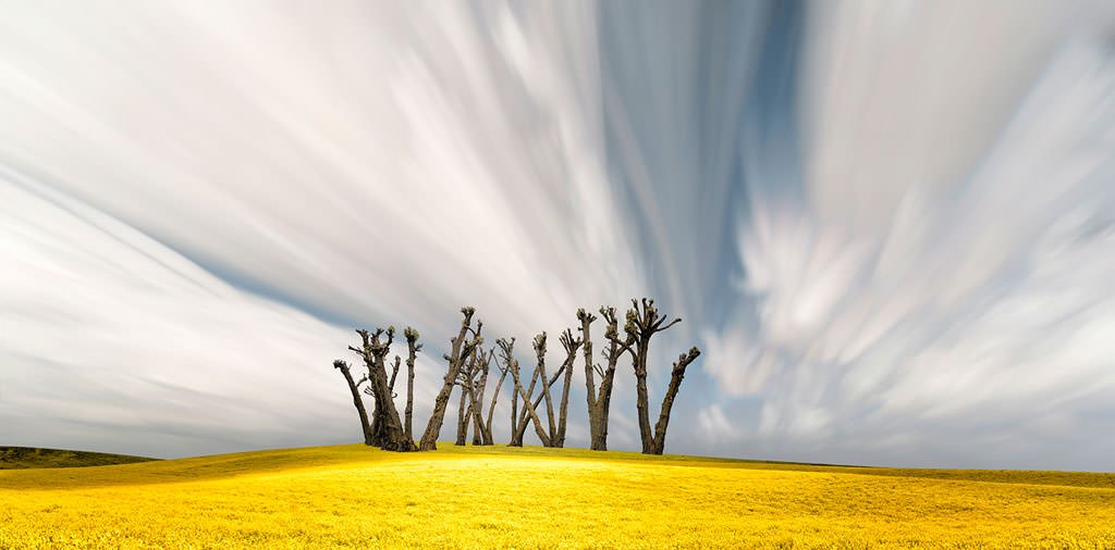 Art-of-Farmland-Palouse-No3_mini