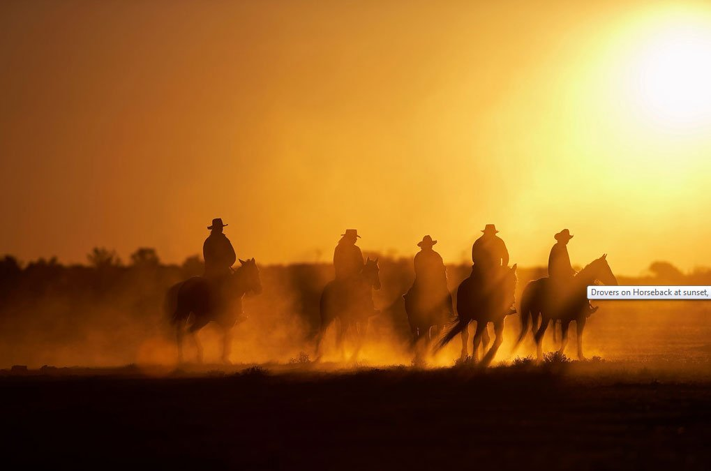 Drovers on Horseback at sunset, Anna Creek Cattle Station. South Australian Outback.