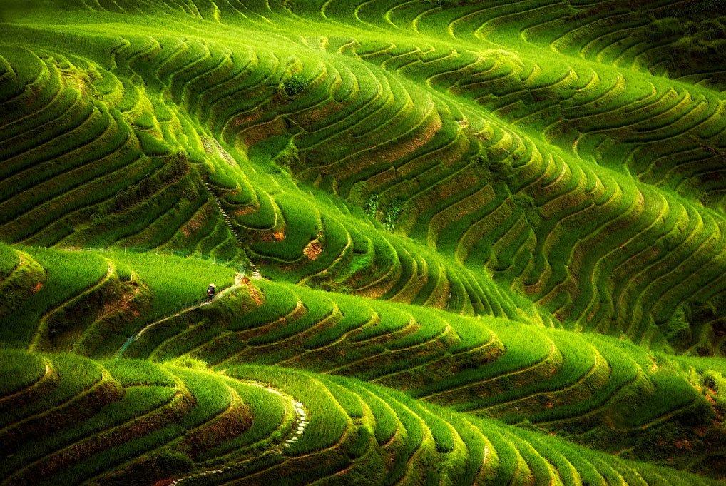Ping' An Rice Terraces. Longsheng. Longji. Guilin. China. Building started in Yuan dynasty
