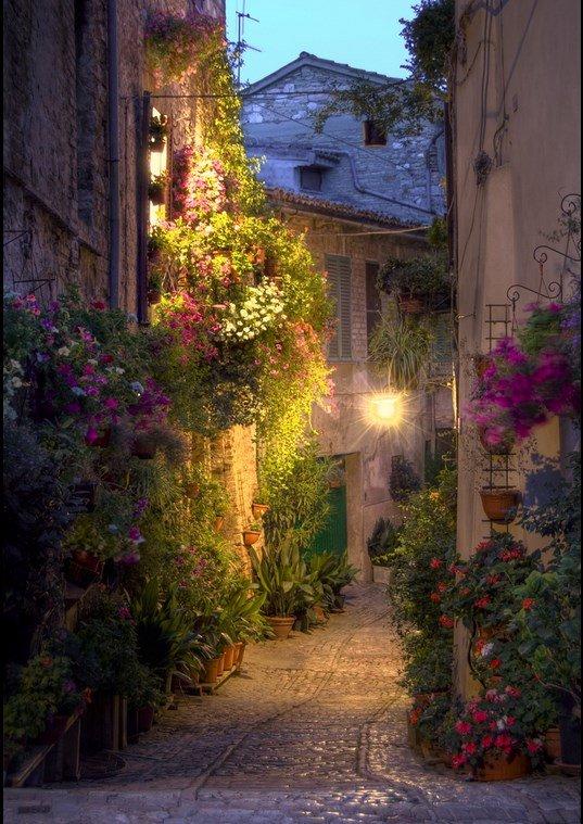 Calle Spello - Umbria - Italia