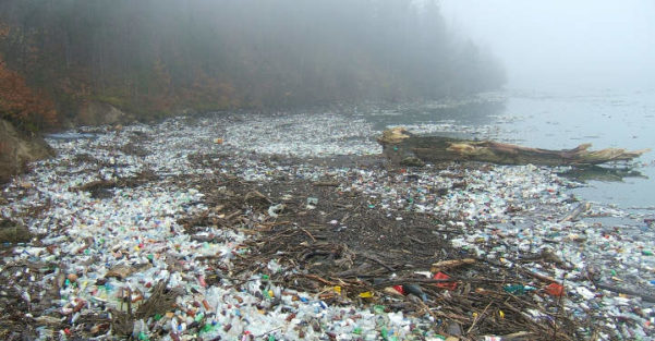 Plastic Pollution Accidental Super Enzyme Eats Dangerous Plastic 00